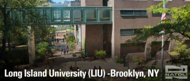 Long Island University Campus